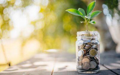 Tue Gutes und verdiene damit – wie das Private Banking mit ESG wachsen und profitabler werden kann